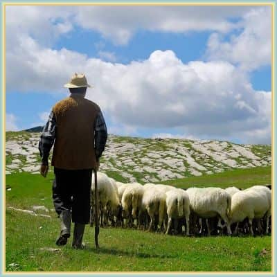 دانلود آهنگ چوپان تنها the lonely shepherd