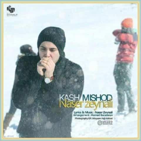 دانلود آهنگ کاش میشد از ناصر زینعلی